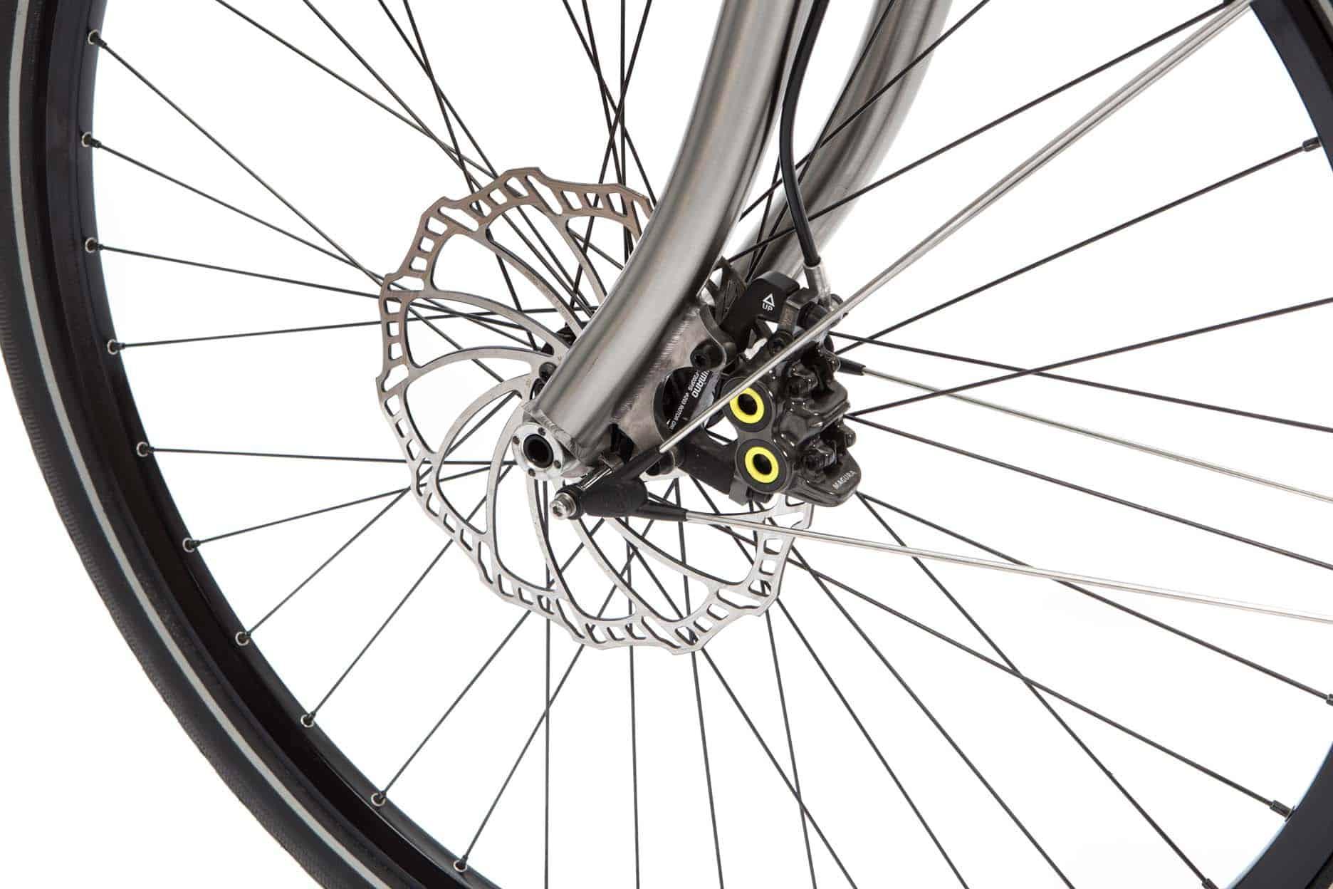 Pinion-E-Bike-with-Gates_6