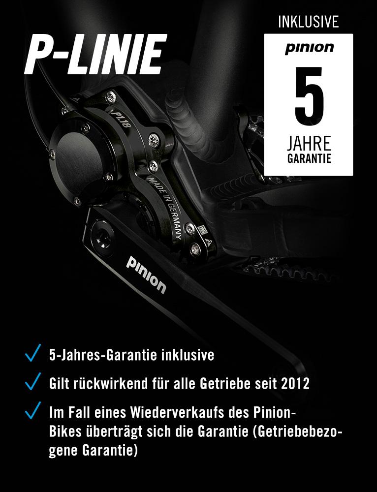 Pinion Getriebe Garantie
